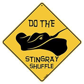 ray shuffle
